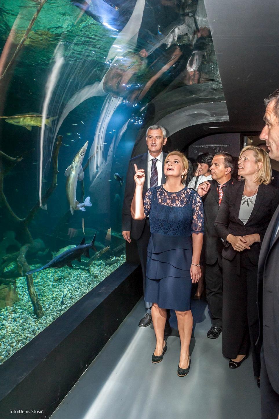 predsjednica_rh_razgledala_karlovacku_aquatiku_2.jpg