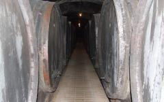 """Podrumski hodnici vinarije """"Vinag"""".jpg"""