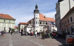 Mariborski dvorac.jpg