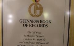 Guinessov certifikat.jpg