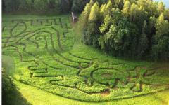 bled-labirint