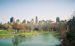 newyork-foto-andrejamilas-relaxino.jpg21.jpg