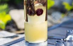 esplanade_zagreb_hotel_-_oleander_terasa_-_lynchburg_lemonade.jpg