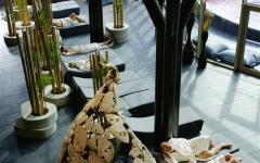 terme-olimia-wellness-orhidelia